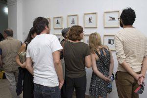 Otvoren šesti Festival savremene umetnosti Dunavski dijalozi